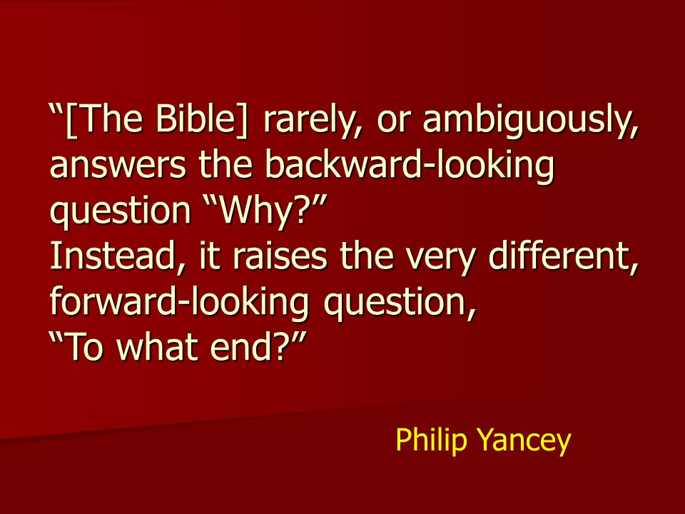 [The Bible] rarely, or ambiguously, answers the backward-looking question Why Instead, it raises the very different, forward-looking question, To what end